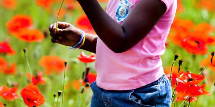 Bij Kindcentrum Christoffel Is Een Tiny Forest Aangeplant Compleet Met Rode Klaprozen.
