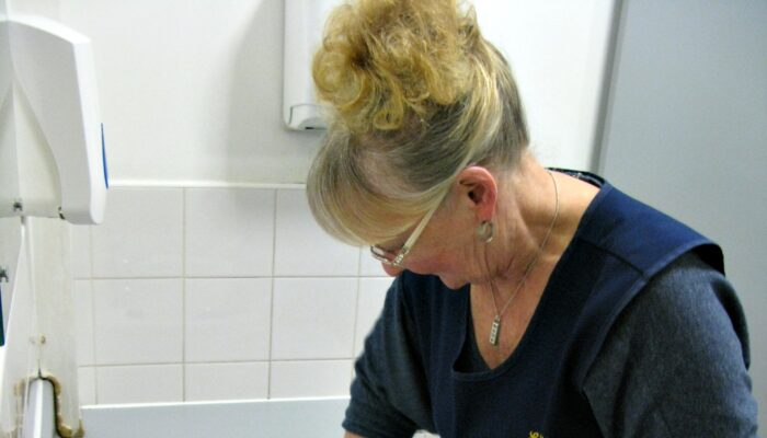 Toiletjuffrouw Onthult Wc-geheimen