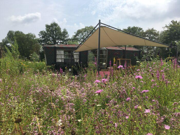 De Vlindertuin Van Mot In Mokum In NoordOogst