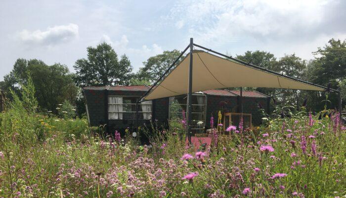 Plannen Voor Vlindertuin Mot In Mokum Bekend