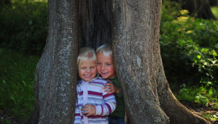 Derde Tiny Forest Bij Biervlietplein