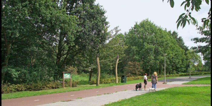 Het Eendrachtspark Met Links De Ingang Van Junglepark.