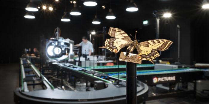 Met Deze 'lopende Band' Worden Insecten In Detail Gefotografeerd.